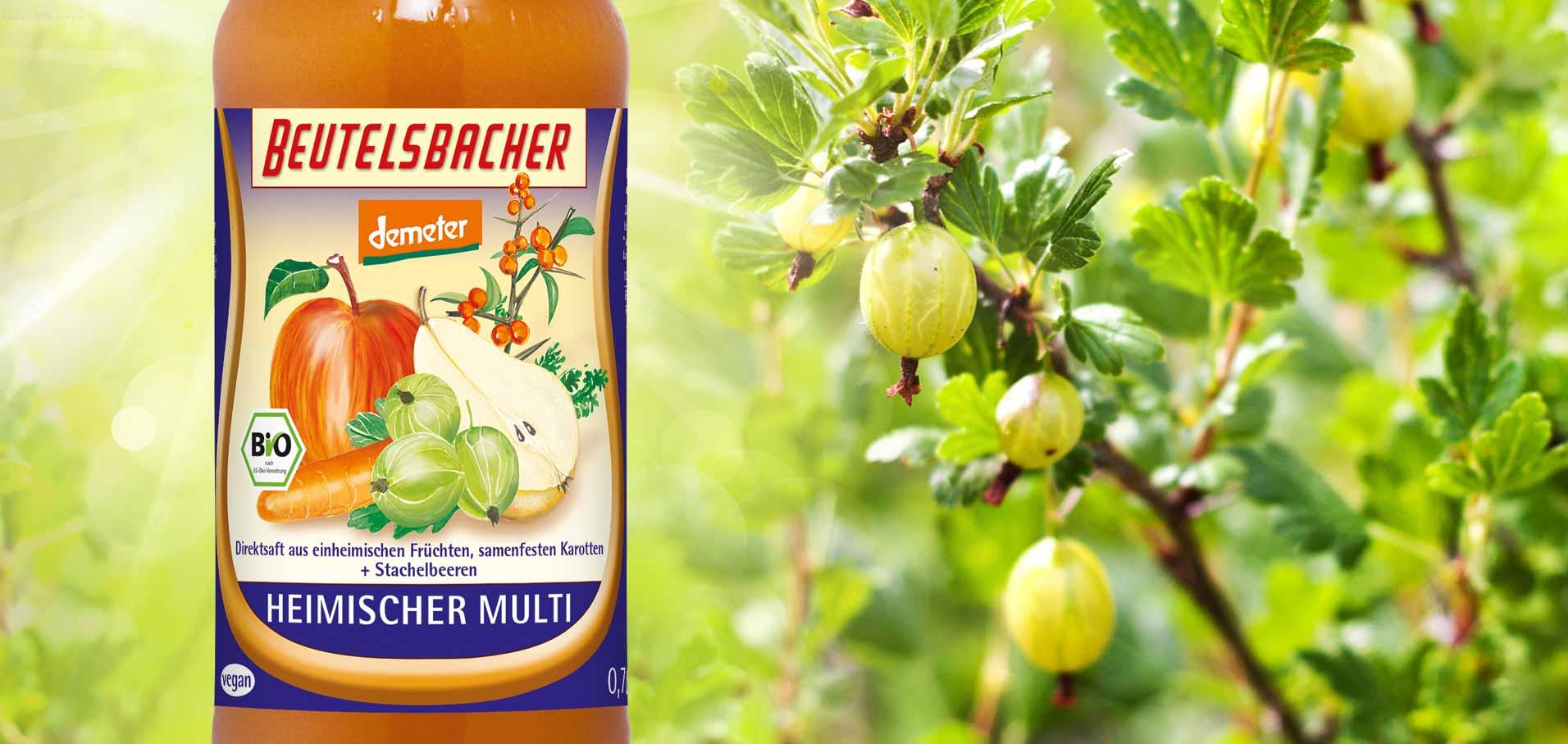 Heimischer Multi samenfeste Karotten Stachelbeere Demeter Direktsaft